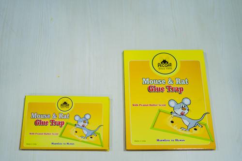 Mouse-Trap-2